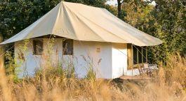 ein Zelt auf einem Feld