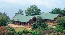 Auu00dfenansicht des Clouds Mountain Gorilla in Bwindi, Uganda