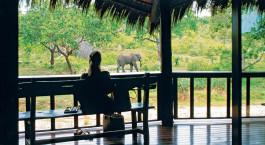 Terrasse im Ulusaba Safari Lodge in Kru00fcger, Su00fcdafrika