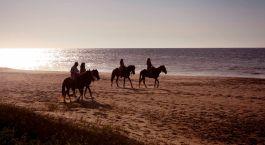 eine Person, die ein Pferd am Strand reitet