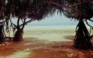 Enchanting Travels - Sri Lanka Reisen - Lotus Villa Ayurveda Retreat - Strand
