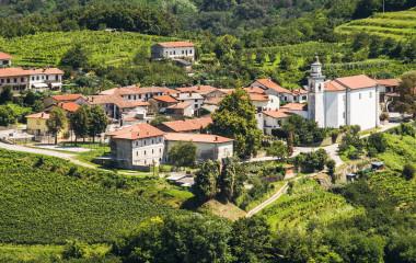 Goriska Brda Wine Region