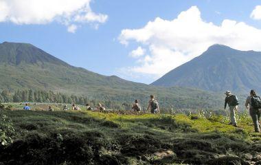 Group of tourists climbing Virunga Mountain to trek the mountain gorillas
