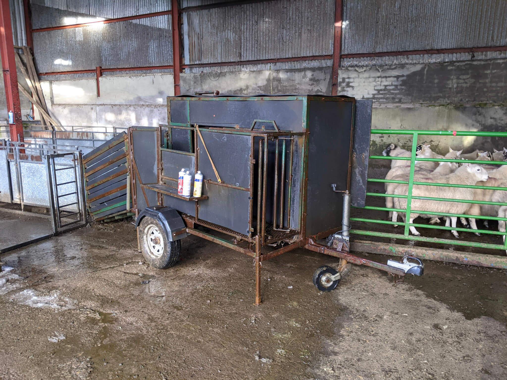 Custom built trailer for scanning sheep.