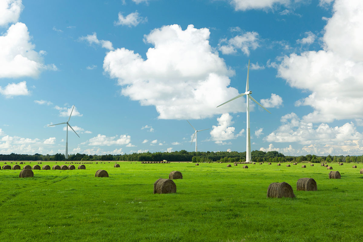 Using renewable energy sources preserves the environment