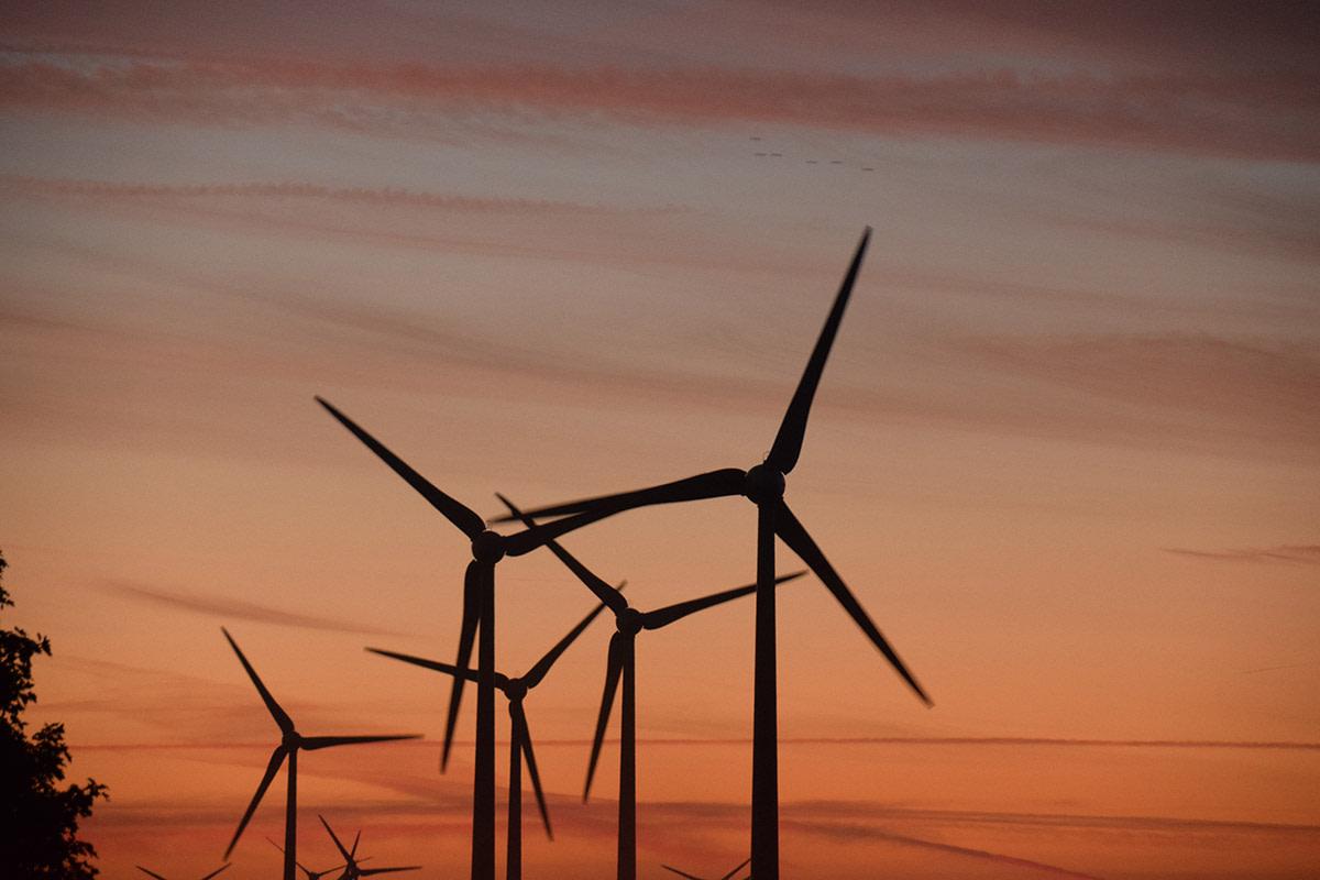 Elektros energijos rinkos apžvalga | 2020 m. sausis