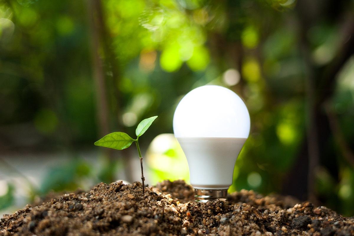 Nacionalinis kovos su klimato kaita planas