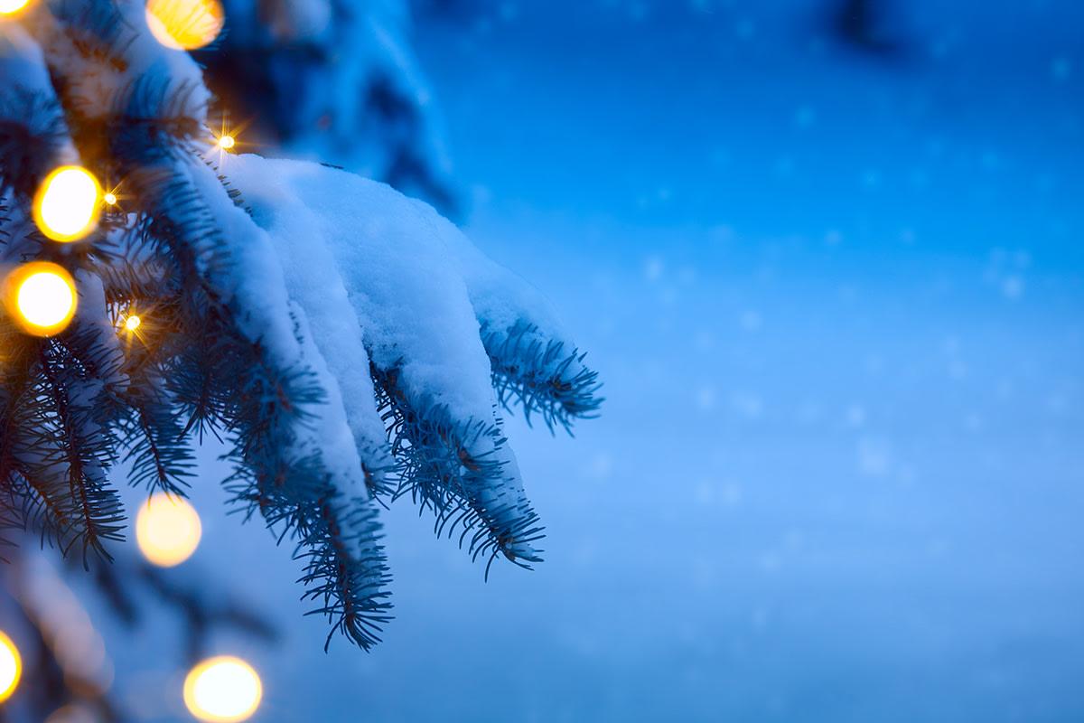 Anna lahja luonnolle ja itsellesi – näin säästät sähköä jouluna