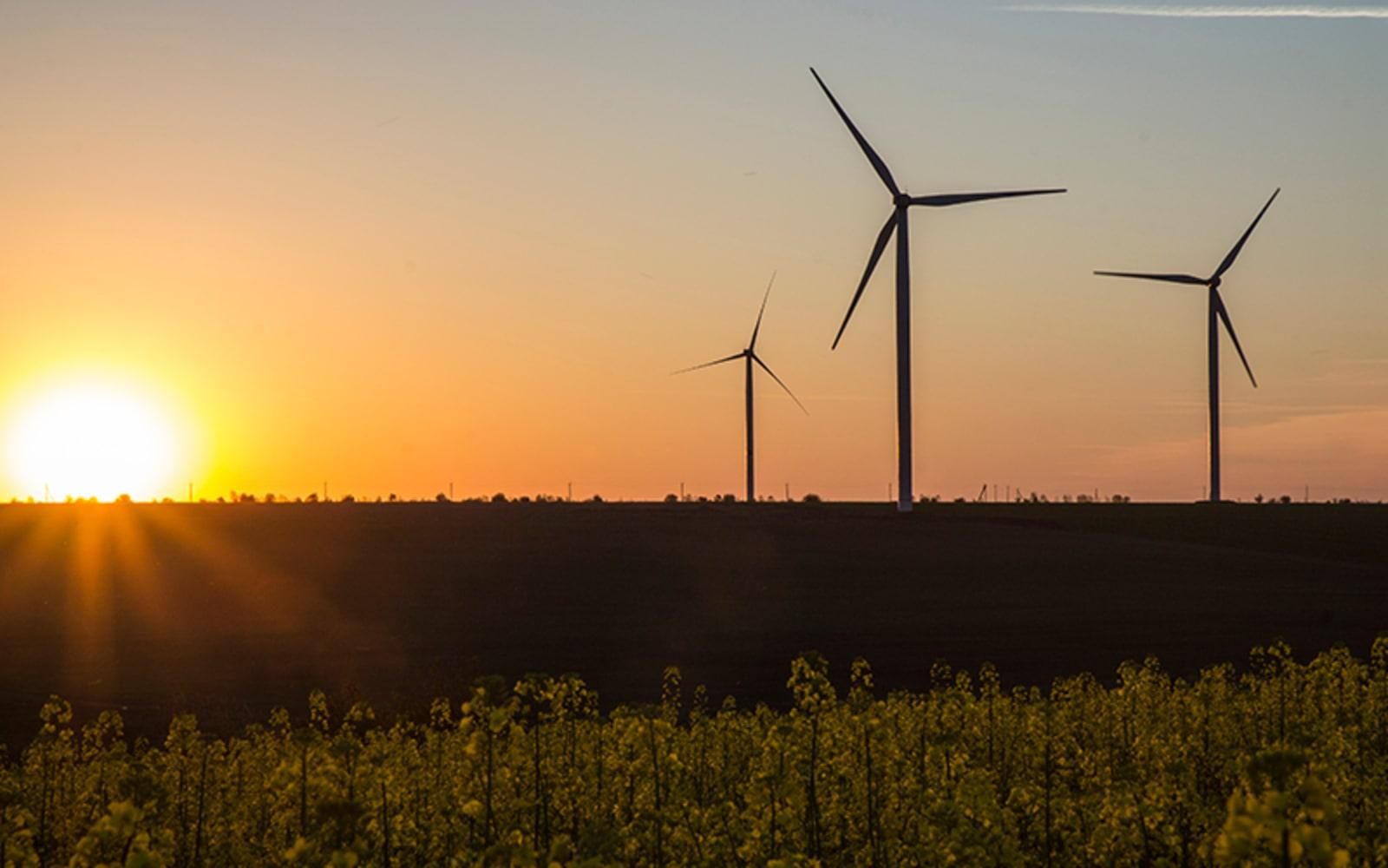 Pärnu algatas Enefit Greeni taotlusel tuulepargi eriplaneeringu