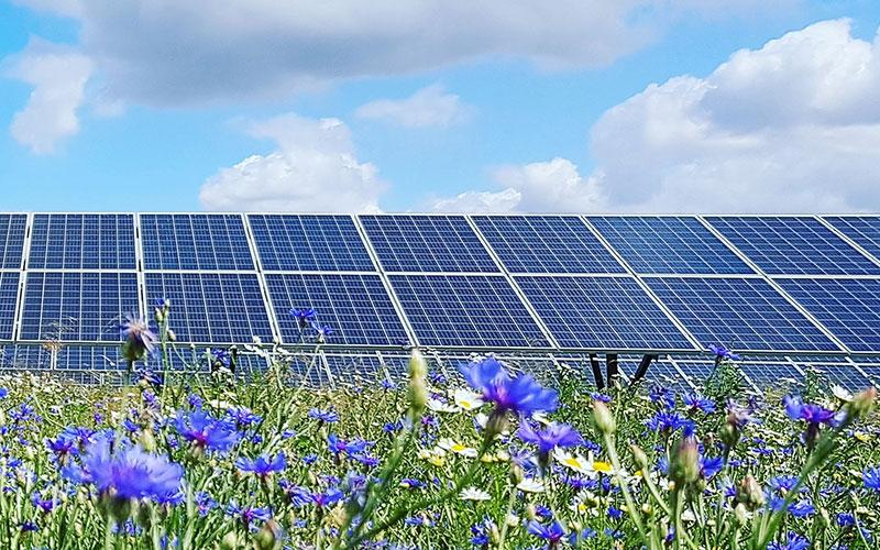 2020 marked breakthrough in solar energy
