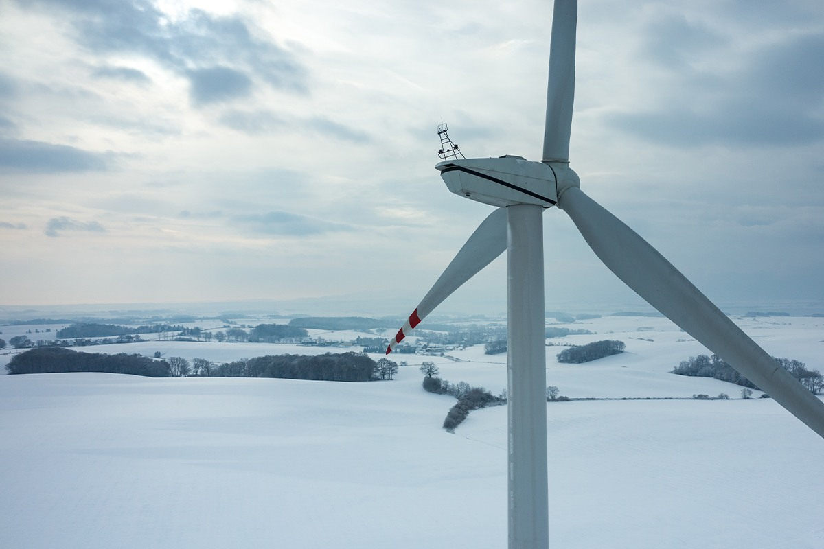 Lack of wind and cold weather increases market prices: what shall the electricity user do?