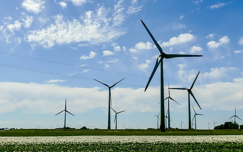 Enefit Green is exploring the possibility to build a wind farm in Paikuse rural municipality district, Pärnu county