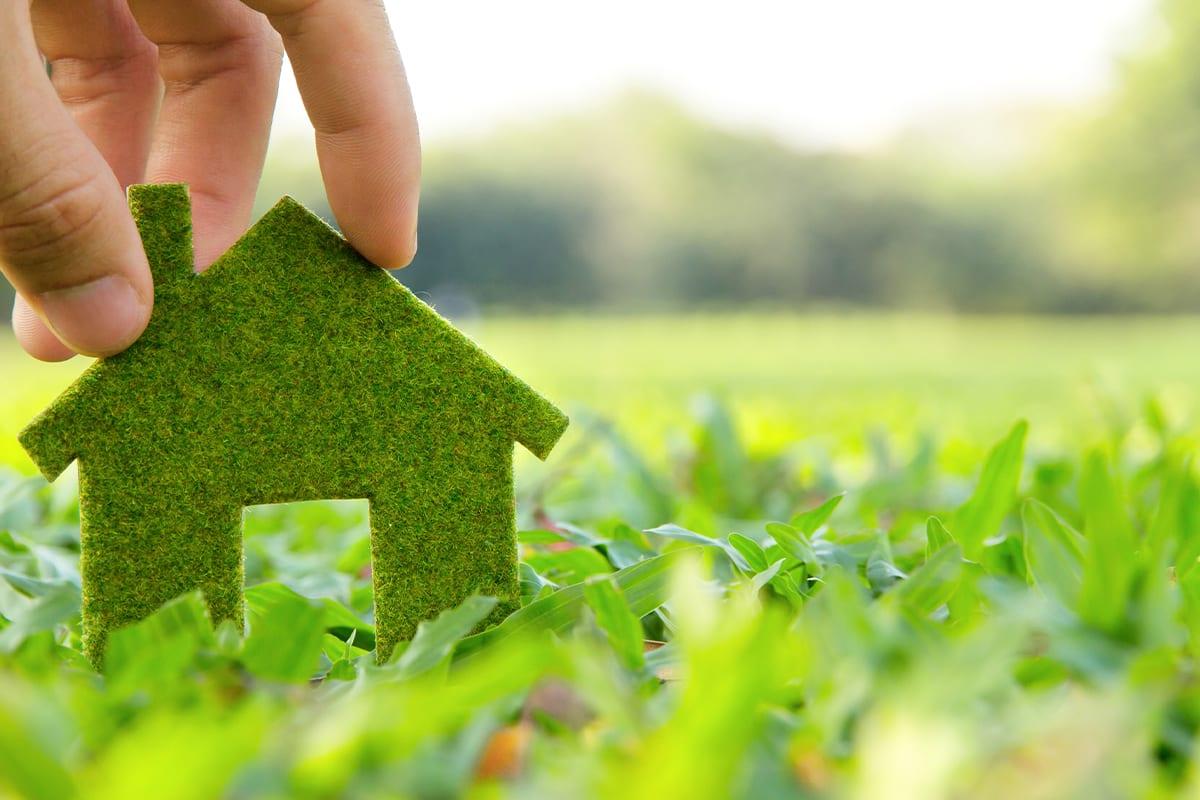 Suojele ympäristöä kanssamme: sähkölasku sähköisesti Enefitin kanssa