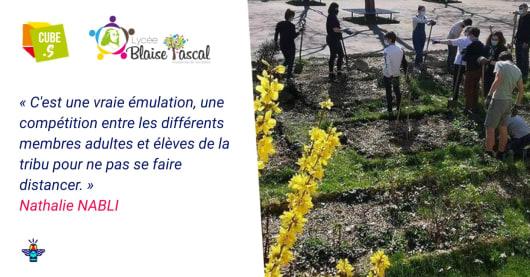 Le lycée Blaise Pascal engagé pour l'environnement