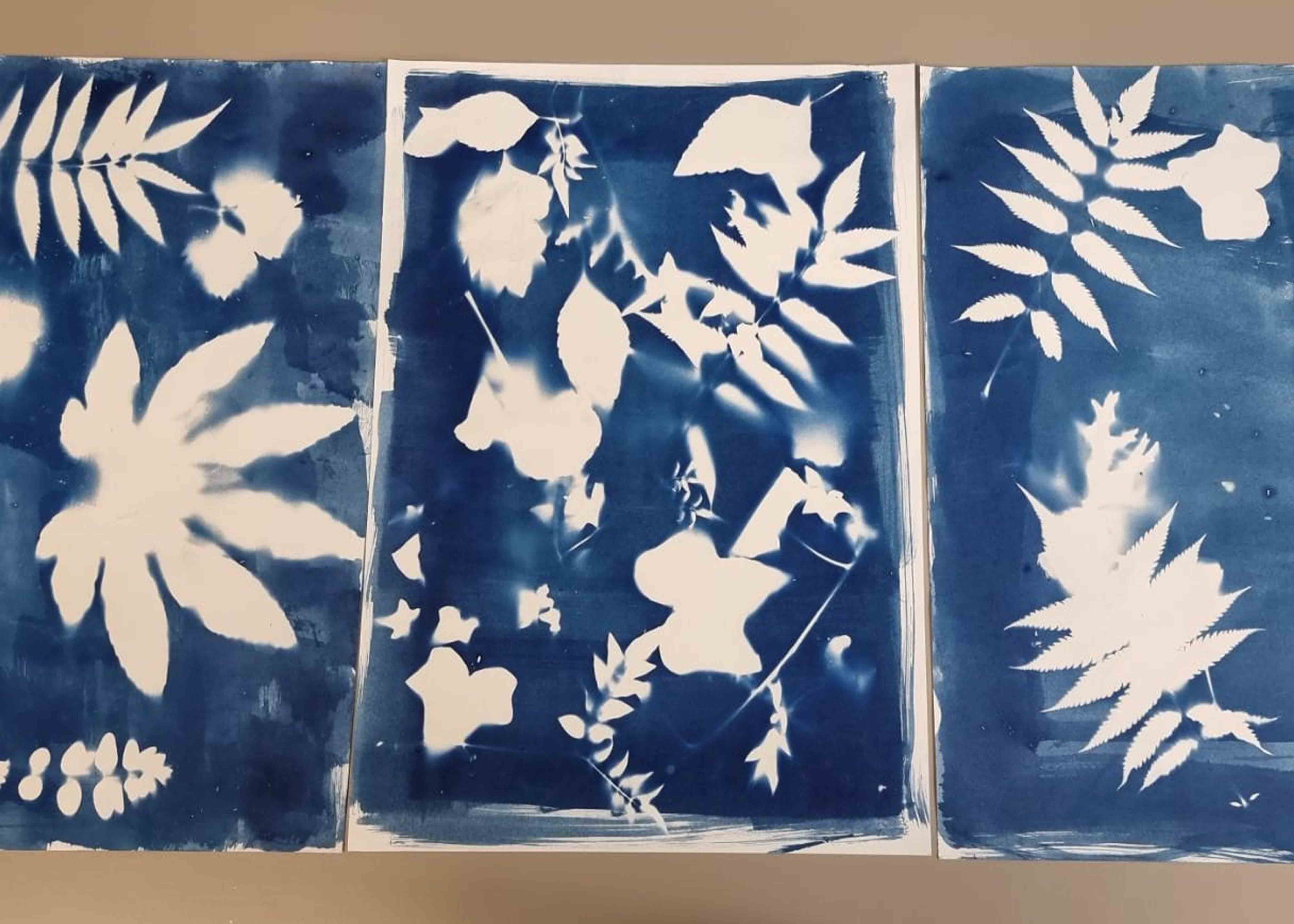 Floral cyanotypes