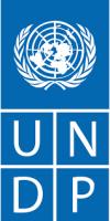 Icon for UNDP partner