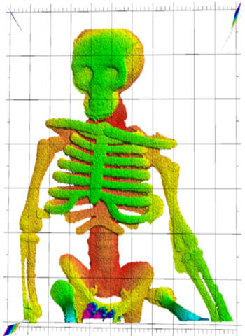 "NIST researchers demonstrated that laser ranging could ""see through flames"" to make this image of a plastic skeleton toy. Laser ranging captured the plastic skeleton's complex three-dimensional shape, with depth indicated by false color. The plastic did not melt or deform in the fire.  Credit: Baumann/NIST"
