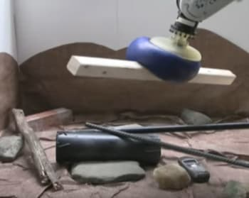 The soft jamming robotic gripper is capable of picking up irregularly shaped objects easily. (Image courtesy of Jaeger Lab/University of Chicago.)