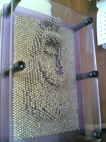 An impression left in a pin art board by the lower half of a face. (Image courtesy of Eduardo Habkost.)