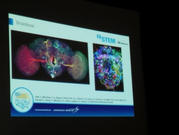 Dr. Dilworth's colorful images of a brain is certainly inspiring.