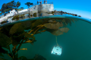 OpenROV Trident - Underwater Drone for Every User > ENGINEERING com