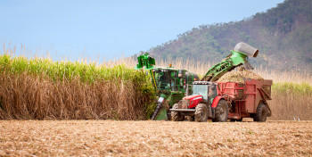 With the introduction of biomass generators, Cuba plans to start farming