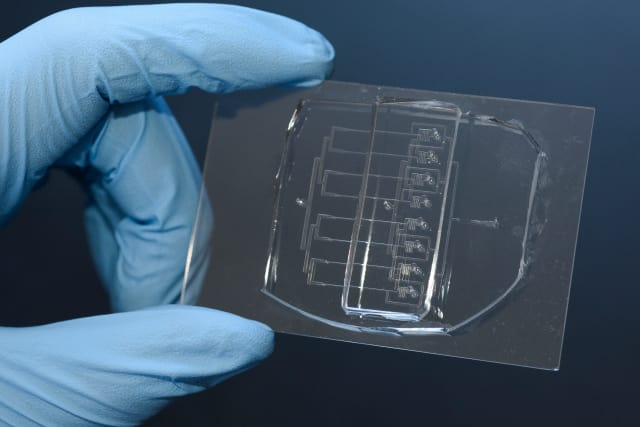 This eight-channel version of their tool can cut cells over 200 times faster than conventional methods. (Image courtesy of L.A. Cicero/Stanford News Service.)