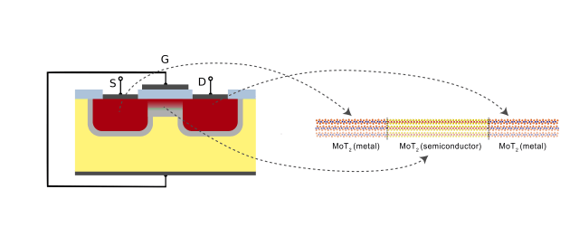 The standard 3-D FET has two electrodes (source and drain, S and D) made of doped silicon and a semiconducting channel in between. When the transistor is on, the electrons move from the source to the drain passing through the channel. The 2-D FET featured in this study uses MoTe2 for both metal (red) and semiconductor (yellow), reducing off-current effects and dangling bonds which are becoming a problem with the smaller 3-D transistors. (Image courtesy of IBS.)