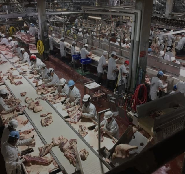 At the fabrication line, workers are packed in elbow-to-elbow to cut meat. (Image courtesy of CBC News.)