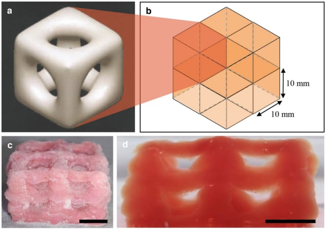 (a) Structure of a single unit. (b) How eight units fit together. (c) A single unit of the 3D-printed structure. (d) An eight-unit structure. (Image courtesy of Imperial College London.)
