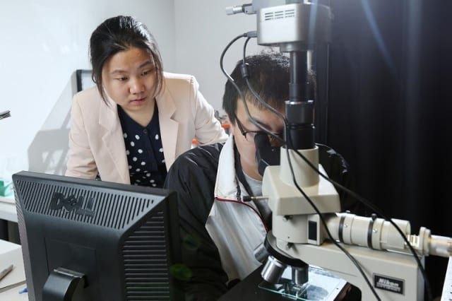 Dr. Gao with her PhD student working on nanophotonic devices under an optical microscope.  Dr. Gao's research focuses on nanophotonic devices and optic technologies. (Image courtesy of Missouri S&T.)