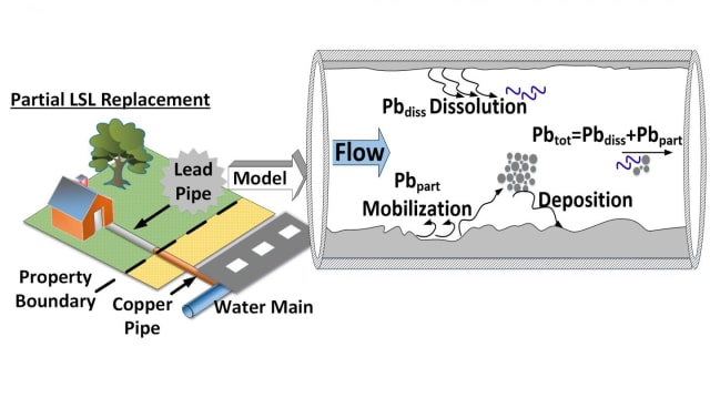 This diagram demonstrates the new model in action: Engineers take into account several factors, including water use patterns and water chemistry, to predict where lead particles will dislodge and end up in the drinking water supply during a partial lead service line replacement. (Image courtesy of Biswas Lab.)
