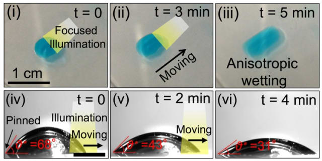 The method can also be used to drive droplets of water across a surface, as the team demonstrated in a series of experiments. By selectively changing the material's wettability using a moving beam of light, a droplet can be directed toward the more wettable area, propelling it in any desired direction with great precision. (Image courtesy of MIT.)