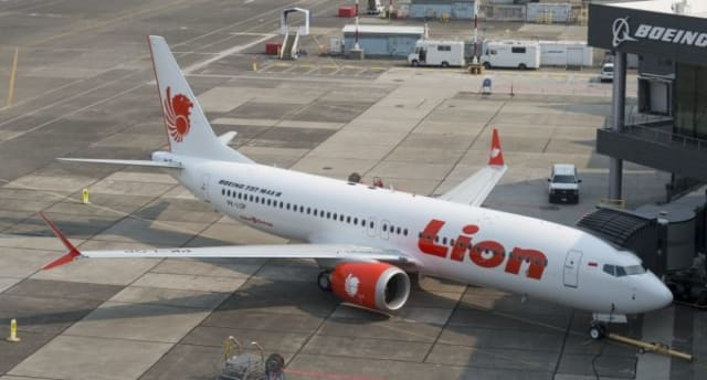 Sunday's crash resembles the Boeing 737 MAX jet that crashed into the Java Sea in Indonesia and killed all 189 people aboard the ill-fated Lion Air flight.