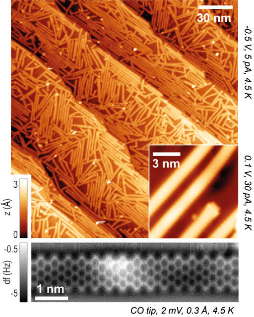 The microscopic ribbons lie criss-crossed on the gold substrate. (Image courtesy of EMPA.)