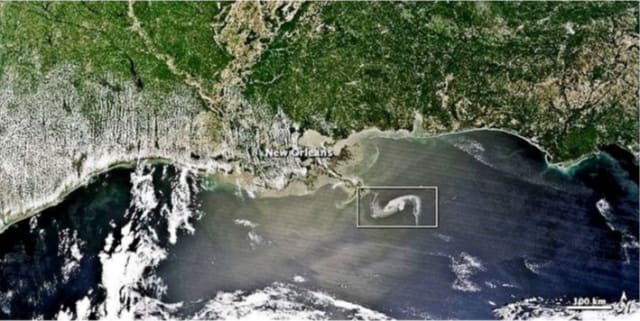Satellite image of the Deepwater Horizon spill in the Gulf of Mexico. The white rectangle illustrates the oil spill, which can be difficult to distinguish against the various clouds in the photo. (Image courtesy of National Center for Biotechnology Information.)