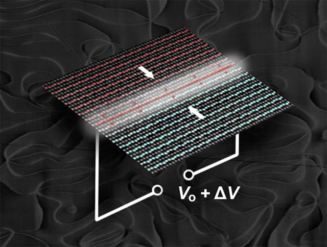 Working towards rewritable nanoscale wires, researchers controlled electrical conductivity in 2-D ferroelectric domain walls by applying a voltage (V). The domain walls behaved like an electric switch. The charges responsible for this behavior were localized to within a few atom widths (a nanometer) of the domain walls, the barriers between regions with different electronic properties, in erbium manganite. In the atomic-resolution electron microscopy image, the positive (red) and negative (blue) polarizations come together in the white region. This polarity mismatch forms a positively charged (head-to-head) domain wall. Applying a voltage added more charge carriers to the domain wall, switching the conductivity of the channel. (Image courtesy of Megan Holtz, Dennis Meier and Emily Falco.)