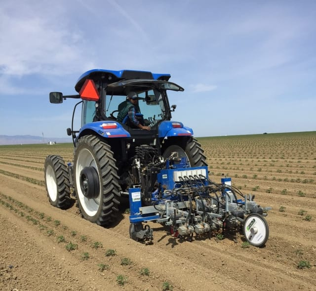 This robotic weeder is going through a tomato field, a crop the researchers are starting to work with as well. (Image courtesy of Steven Fennimore.)