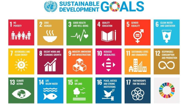 VYVE projects follow the United Nations Sustainable Development Goals. (Image courtesy of VYVE.)