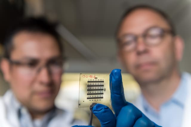 Georgia Tech Senior Research Scientist Canek Fuentes-Hernandez (left) and Professor Bernard Kippelen examine a sample of organic thin-film transistors created with a new nanostructured gate dielectric that gives the devices unprecedented stability. (Image courtesy of Rob Felt/Georgia Tech.)