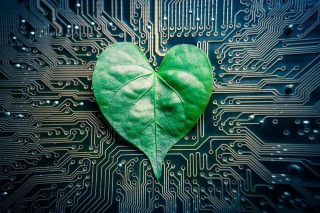 """Engineers have designed a microfluidic device they call a """"tree-on-a-chip,"""" which mimics the pumping mechanism of trees and other plants. (Image courtesy of MIT.)"""