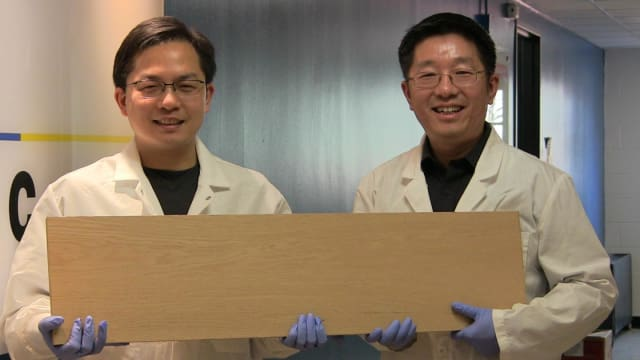Liangbing Hu, left, and Teng Li, right, are engineers at the University of Maryland, College Park who have found a way to make wood more than 10 times stronger and tougher than before. (Image courtesy of University of Maryland.)