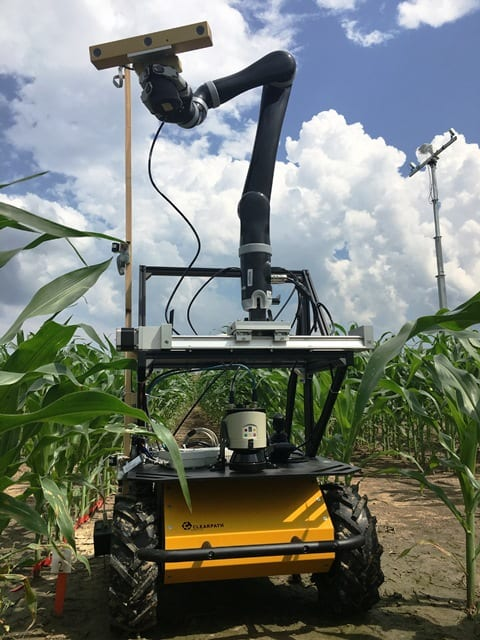 To develop 3-D images of corn plants in the field, DeSouza's team developed a combination approach of a mobile sensor tower (in background) and an autonomous robot vehicle equipped with three levels of sensors and an additional robotic arm. (Image courtesy of Gui DeSouza.)