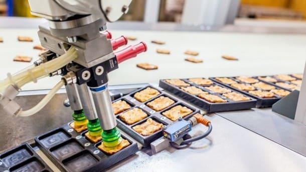 Robotic Salmon - SALMONella!