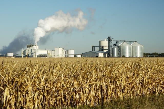 Green energy? How green is chipping every tree in sight for fuel? So asks Michael Moore's Planet of the Humans. An ethanol plant in South Dakota. (Stock photo).
