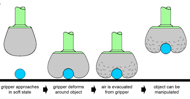 Soft robotic gripper conforming around an object to pick it up. (Image courtesy of Jaeger Lab/University of Chicago.)