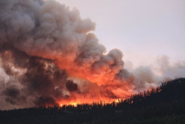 A blaze in the Nadina-Verdun wildfire complex in British Columbia, Canada. Like many other places across the world this summer, residents of B.C. will be facing a colossal rebuilding challenge when the wildfire season is done. (Image courtesy of Tracy Calogheros, CBC News.)
