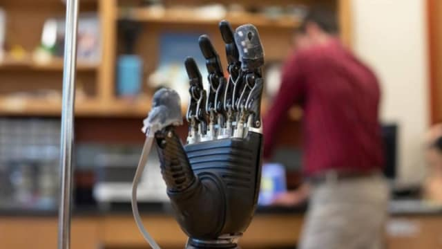 A sensor over a prosthetic hand acts like real skin, giving people the ability to feel sensations. (Image courtesy of Larry Canner/Johns Hopkins University.)
