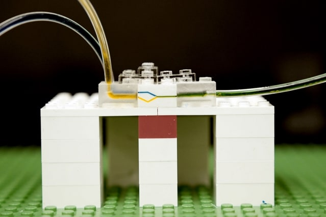 Fluid flows through tiny channels milled into the side walls of LEGO bricks. (Image courtesy of MIT News.)