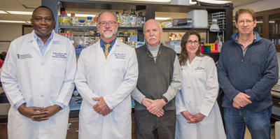 From left, researchers, Flaubert Tchantchou, PhD; Gary Fiskum, PhD; William Fourney, PhD; Julie Proctor, MS; and Ulrich Leiste, PhD, developed materials and frame designs to reduce injuries from under-vehicle explosions. (Image courtesy of University of Maryland.)